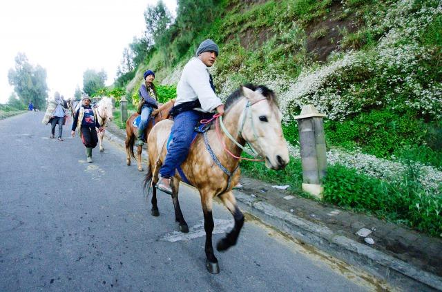 Mayoritas transportasi di Ngadisari